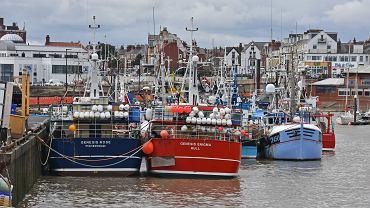 Brexit potyka się o ryby. Połowy na wodach brytyjskich jednym z głównych problematycznych tematów