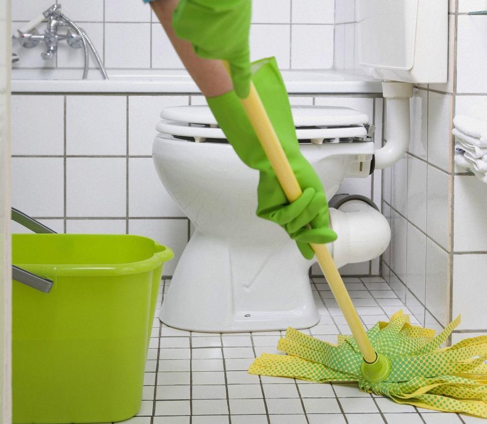 Zdjęcie numer 2 w galerii - Jak sprzątać z sensem? Gdzie żyją bakterie?