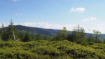 Barania Góra jest jednym ze szczytów Beskidu Śląskiego