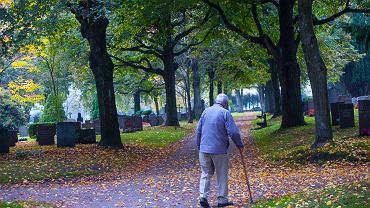 Sami decydujemy, czy nasze składki emerytalne, trafią do spadkobierców, czy też przejmie je państwo.