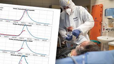 """Rządowy ekspert: Spadek liczby zgonów możliwy za 2-3 tygodnie. """"Trzeba zastosować przesunięcie"""""""