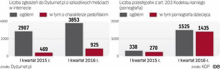 Przestępczość seksualna wobec dzieci i dystrybucja materiałów pedofilskich są w Polsce coraz większym problemem