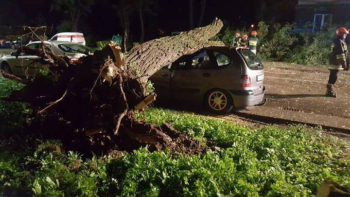 Drzewo spadło na samochód w Nowej Hucie