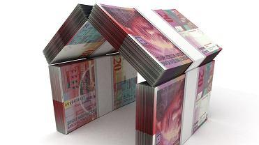 Co piąty kredyt mieszkaniowy w Polsce to kredyt udzielony we frankach szwajcarskich. Kredyty we frankach spłaca ok. 450 tys. polskich rodzin.