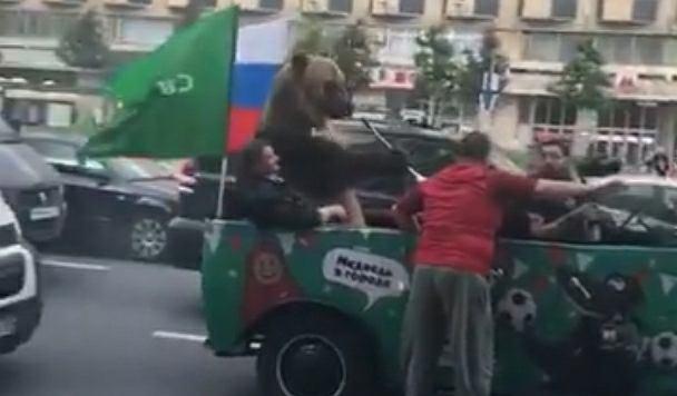 Niedźwiedź w samochodzie
