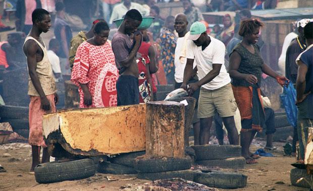 Heban i kość słoniowa: podróż do Abidżanu, podróże, afryka, Bazar rybny - tuńczyk oprawiony na miejscu