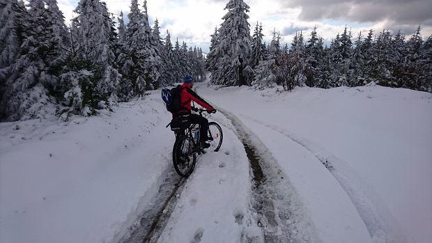Piotr, Indiana i kupa śniegu