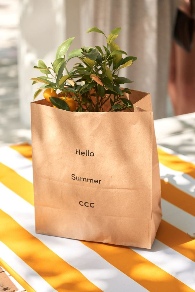 Hello Summer with CCC