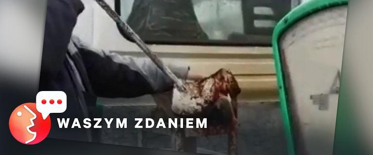 Handlarz zabijał karpie za pomocą gilotyny. Część osób go broni