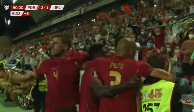 Pepe (Portugalia) i steward cieszący się z gola Cristiano Ronaldo. Źródło: Reddit