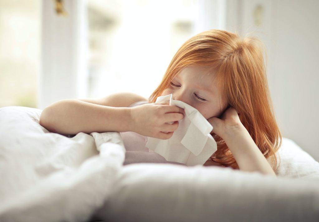Bostonka u dzieci - jakie są objawy i leczenie?