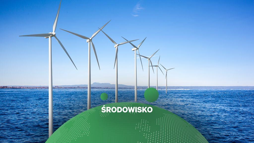 Morska farma wiatrowa, zdjęcie ilustracyjne.