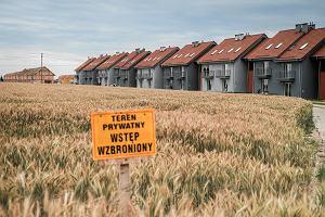 Dopłaty do czynszu niemal dla każdego? Nowy pomysł PiS może wywrócić rynek nieruchomości