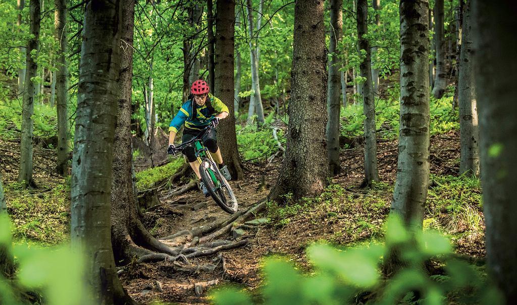 Najlepsze trasy rowerowe w Polsce