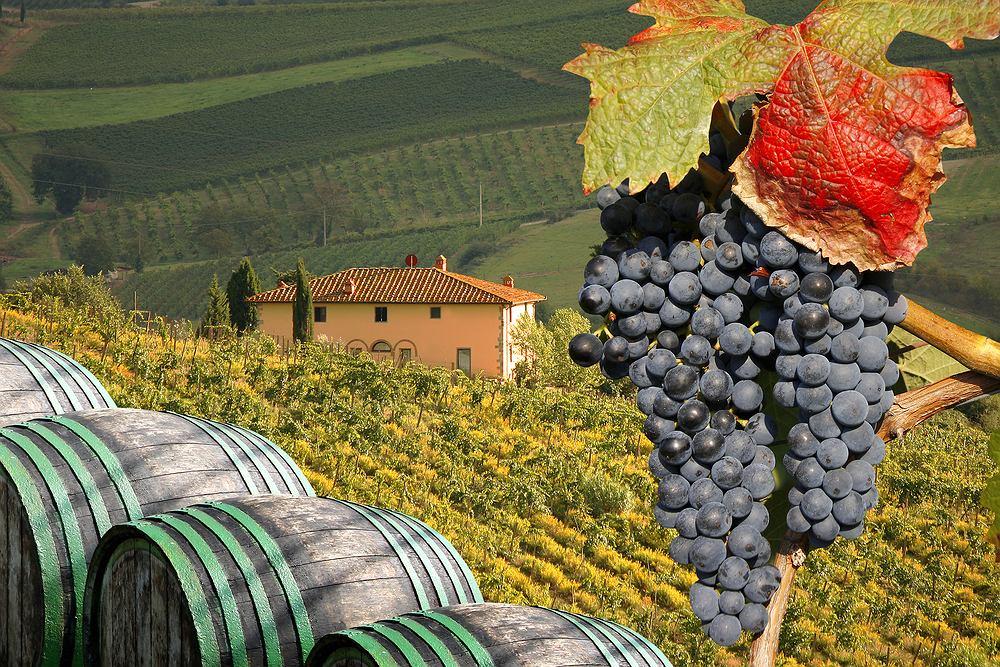Włochy. Wino i winnice w Toskanii - rejony winne