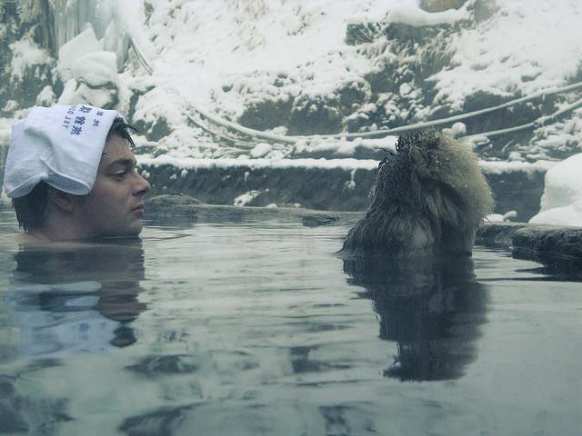 Gorące źródła w Japonii - kąpiel z makakami / fot. spDuchamp/CC/Flickr.com