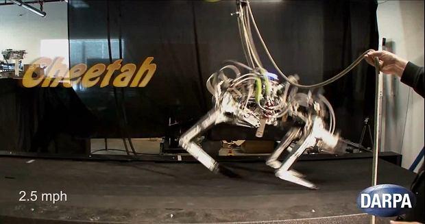 robot Cheetah, fot. YT