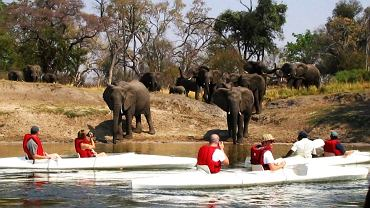 Zambezi Adventure