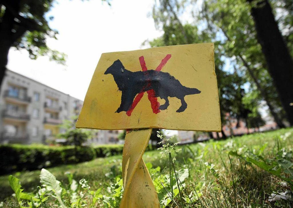 Tabliczka informująca o zakazie wyprowadzania psów