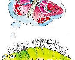 Bajka o brzydkiej gąsienicy