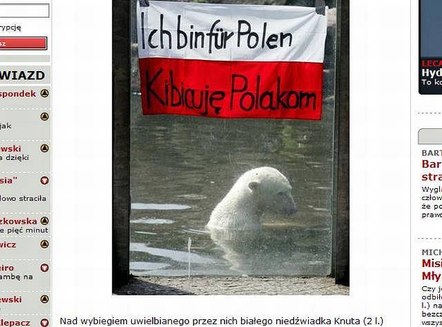 fot. za efakt.pl