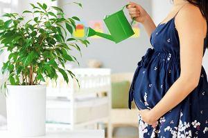 Zdrowie w ciąży - III trymestr