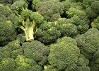 Chcesz mieć mądre dziecko? Jedz orzechy i brokuły
