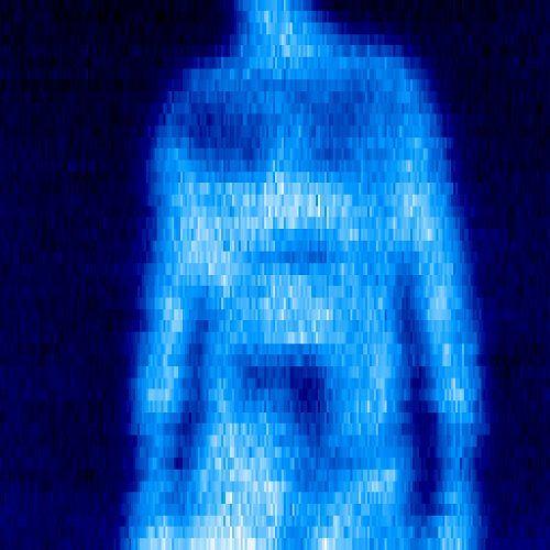 Człowiek widziany przez kamerę THz