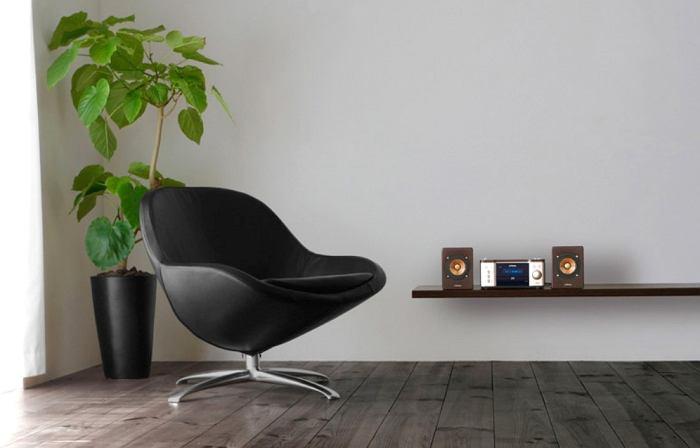 Wood Cone JVC EX-S1