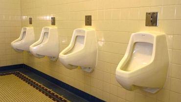 Amerykańskim naukowcom udało się wyhodować w laboratorium cewkę moczową.