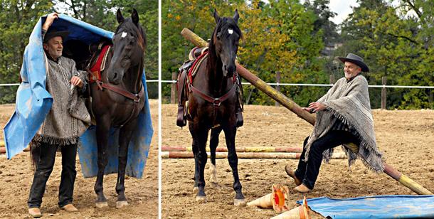 zaklinacz koni, konie,