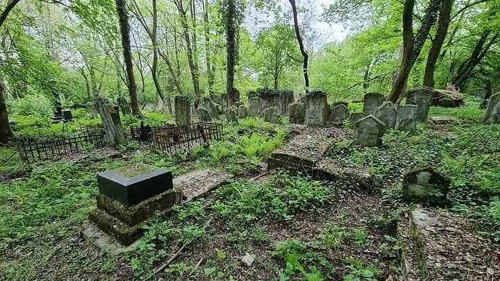 Cmentarz w Przemyślu