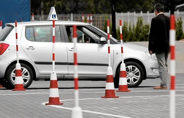 Dyrektorzy WORD-ów apelują o podwyżki cen egzaminów na prawo jazdy. Ze 170 na 230 zł