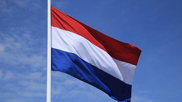Polska firma mówi o nękaniu w Holandii. Europosłanka - o szpiegostwie gospodarczym