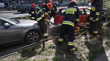 Niż Julia. Silny wiatr w Polsce spowodował wiele zniszczeń (zdjęcie ilustracyjne)