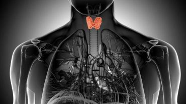 Oznaczenie poziomu tych przeciwciał ułatwia postawienie prawidłowej diagnozy u osób z chorobą tarczycy