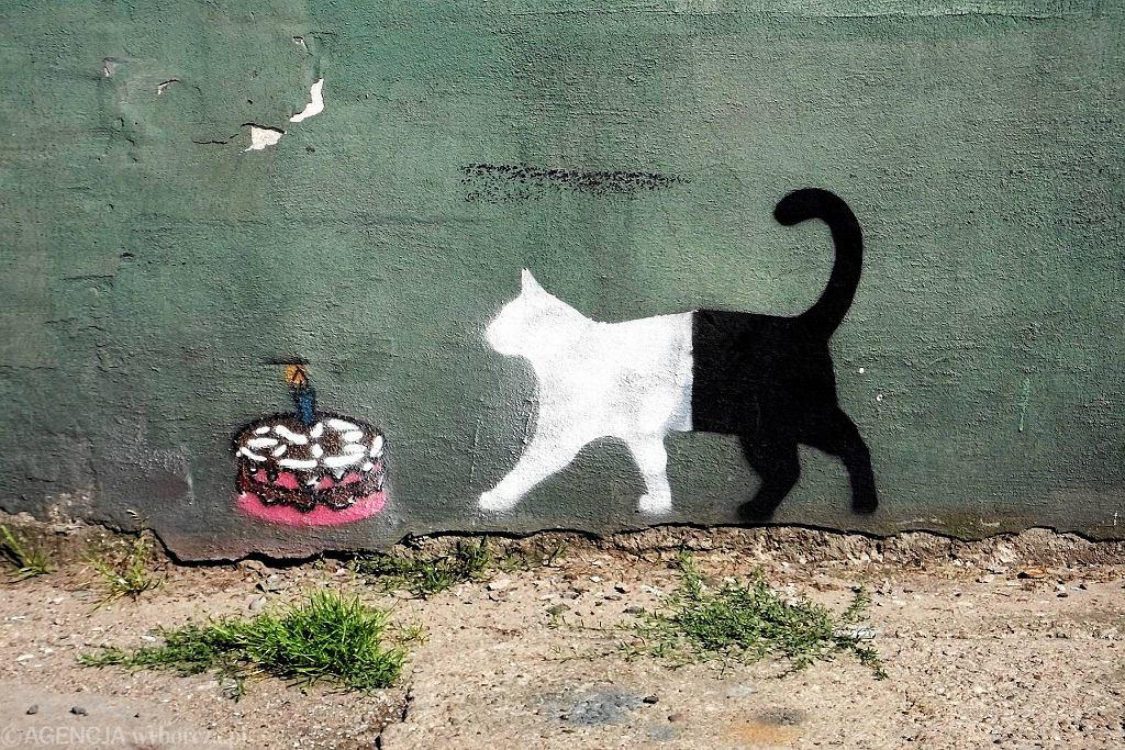 A w przechodniaku między Królewiecką a Sienkiewicza mamy kota jubileuszowego - na pierwszą rocznicę Inko i Gnito