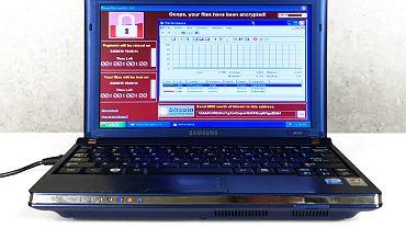 Wirusy wgrane do laptopa wyrządziły szkody na ok. 95 mld dolarów