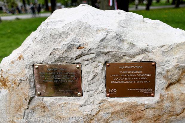 2.05.2016, park # maja w Częstochowie. Odsłonięcie kamienia z tablicami informującymi, iż posadzony 100 lat temu dąb otrzymał imię 'Konstytucji'