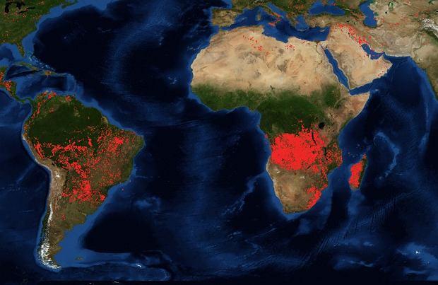 Pożary w Ameryce Południowej i Afryce w ciągu ostatnich 24 godzin. Stan na 25.08.2019