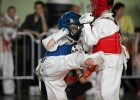 Karatecy dali popis. Za nami II edycja Dragon Kyokushin Cup [ZDJĘCIA]