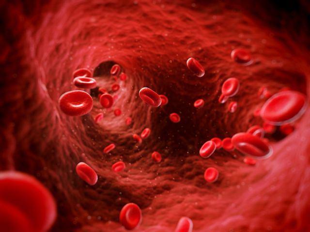 Niedobór witaminy C sprawia naczynia krwionośne tracą szczelność, co skutkuje krwotokami wewnętrznymi