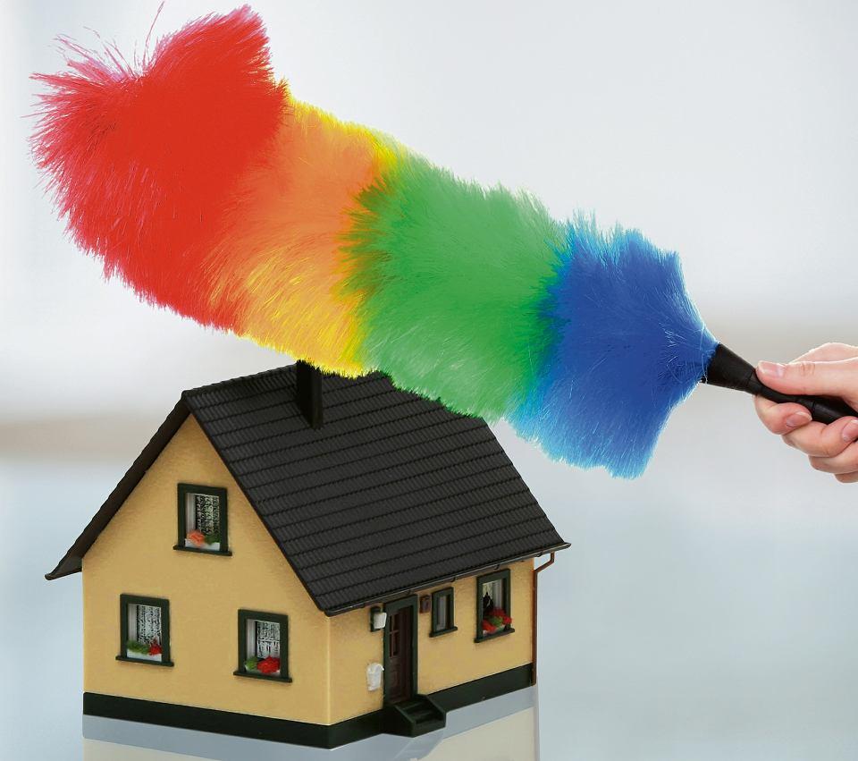 Alergia Jak Najlepiej Sprzątać Dom Alergika