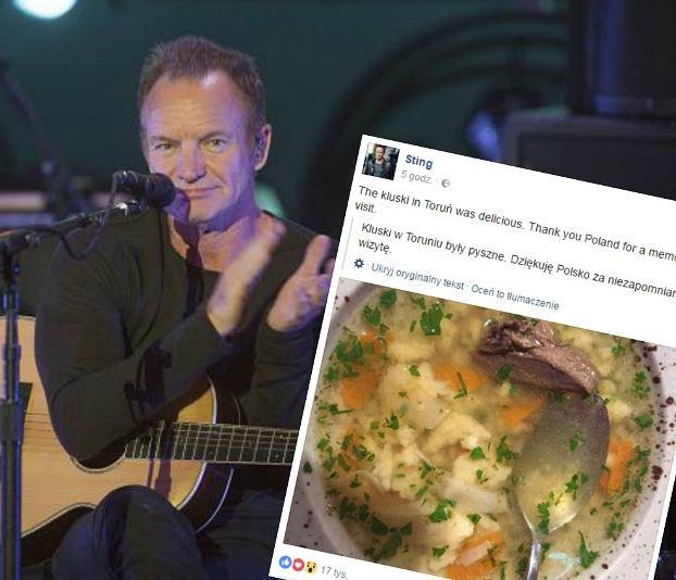 Sting zachwycił się polskim rosołem z gołębia. Muzyk pochwalił się polską potrawą na swoim profilu na FB