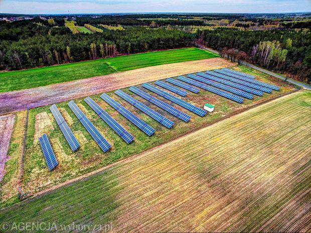 Europa przechodzi zieloną rewolucję, a Polska walczy o elektrownie węglowe. Ile tracimy, hamując rozwój OZE?