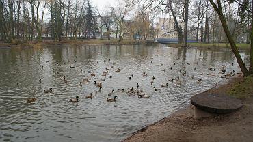 Ogród Dernałowiczów w Mińsku Mazowieckim