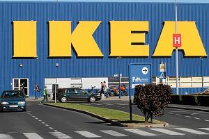 IKEA w każdym domu. Pomysłowi przedsiębiorcy zarabiają na polskiej miłości do szwedzkich mebli