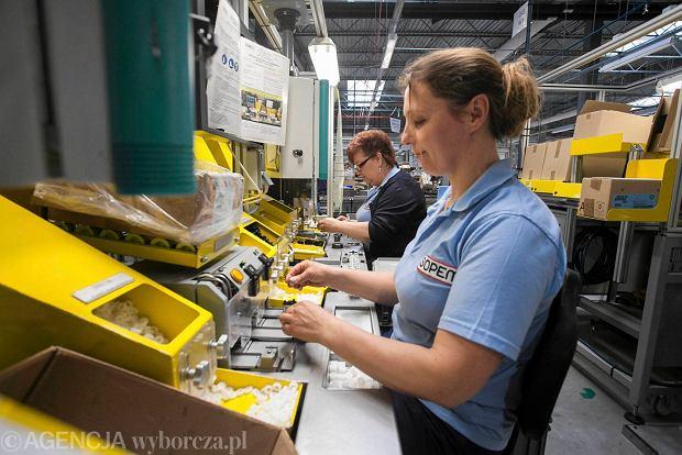 Niepołomice: fabryka francuskiej grupy Somfy