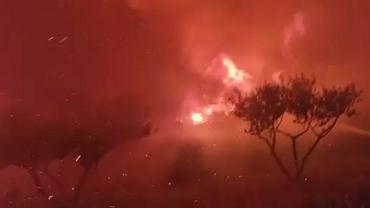 Chorwacja. Spłonęło około 700 hektarów ziemi. 'To było piekło'