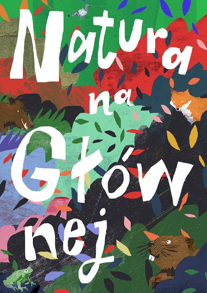 Fragment materiału edukacyjnego 'Natura na Głównej' autorstwa Grzegorza Myćki